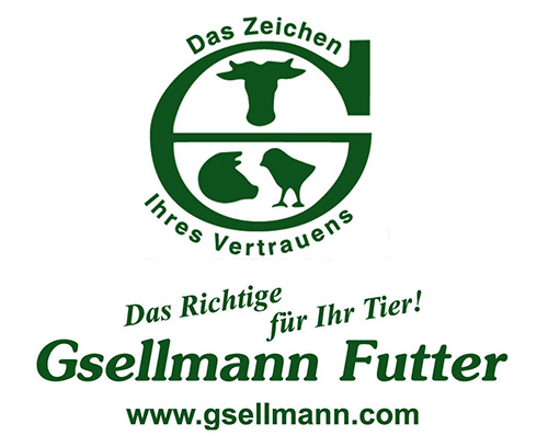 Gsellmann